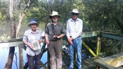 Graham Fry - mangrove boardwalk Poulton Park_20170302